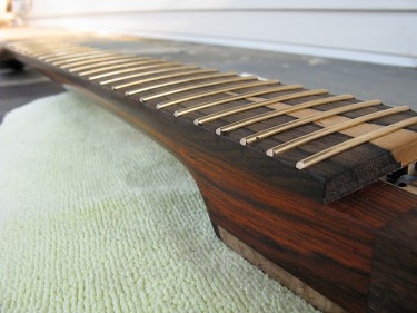 Evo wire on a Ziricote fretboard.