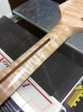 Eastern Hard Curly Maple